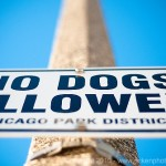 Humbolt Park - No dogs allowed in a park?